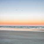 birds flying over the ocean at Beacher's Lodge