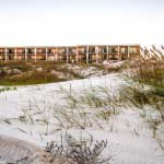 Nestled in the sand dunes