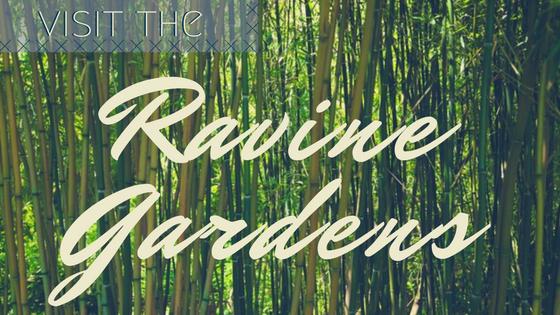 Ravine Gardens