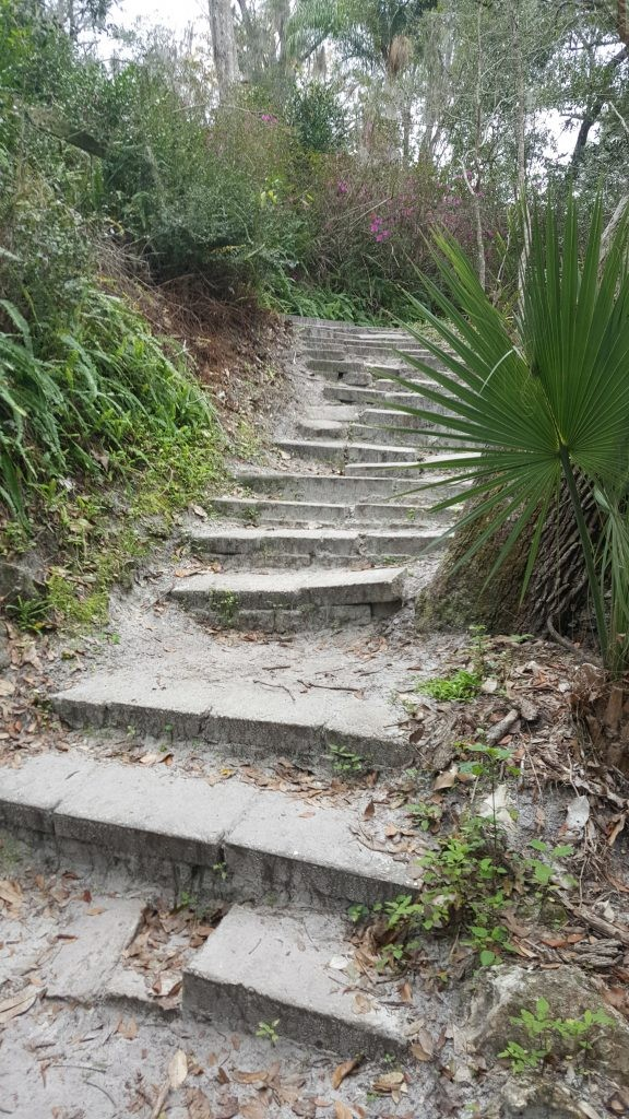 Ravine Gardens Trail Steps