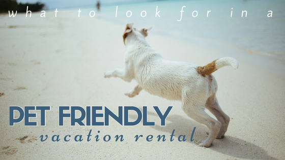 Pet Friendly Vacation Rentals